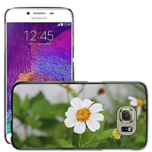 Super Stella Slim PC Hard Case Cover Skin Armor Shell Protection // M00106784 Fly Compound Eyes Close Nature // Samsung Galaxy S5 S V SV i9600 (Not Fits S5 ACTIVE)