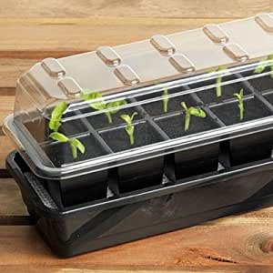 12 cell self watering seed success kit for Indoor gardening amazon