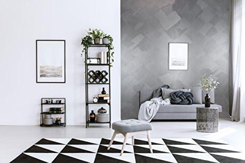 Wanders24 Edel-Metallic (80 ml, reines Silber) Wand-Farbe zum Streichen im  Metallic Look, individuelle Gestaltung für Zuhause, Made in Germany