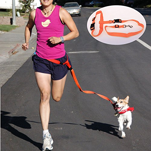 EverTrust(TM) Nylon Dog Leash Hands Free Pet Lead Walking Running Jogging Waist Belt Leash for dog Chihuahua Adjustable 7Colors
