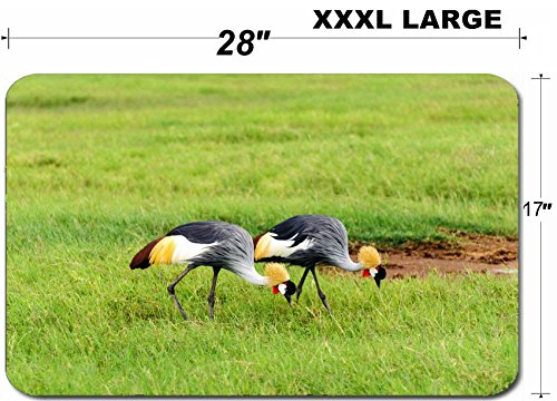 Luxlady Large Table Mat Non-Slip Natural Rubber Desk Pads the crowned crane a majestic bird species known for graceful courtship dances is one of bea by Luxlady (Image #3)