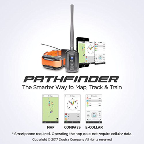 Dogtra Pathfinder High-Response Tracking & Training System, Black, One Size by Dogtra (Image #2)