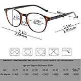 5 Pairs Reading Glasses - Standard Fit Spring Hinge