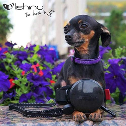 Lishinu New 2 Original   Rope String with Stop Button Leash Designed in Italy and Made in EU (M 26-77 lb / 12-35 kg, Black)