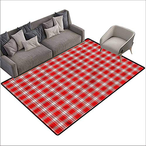 (Polyester Non-Slip Doormat Rugs Colorful Abstract,Traditional Picnic Theme 80