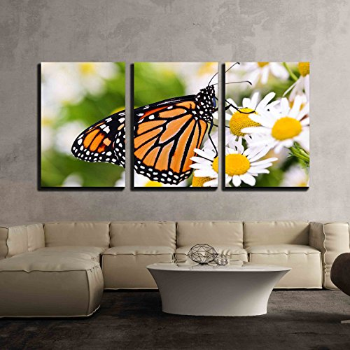 - wall26 - 3 Piece Canvas Wall Art - Colorful Monarch Butterfly Sitting on Chamomile Flowers - Modern Home Decor Stretched and Framed Ready to Hang - 24