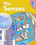 The Senses, Rufus Bellamy, 1583404597
