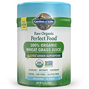 Garden of Life Raw Organic Perfect Food Wheat Grass 120g Powder (Packaging May Vary)