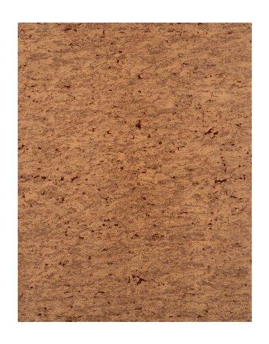 York Wallcoverings RN1027 Modern Rustic Sueded Cork Wallpaper (Suede Wallpaper Texture)