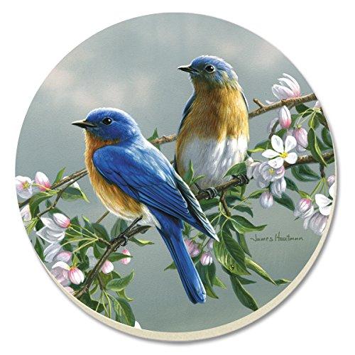 CounterArt Beautiful Songbirds Bluebirds Absorbent