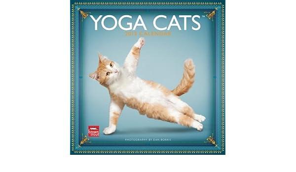 Yoga Cats Calendar: Amazon.es: Dan Borris: Libros en idiomas ...