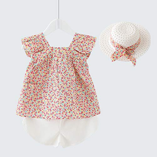 Little Kid Girl Clothes Floral Vest T-Shirt Tops +Shorts Pant with Cute Sun Hat 3Pcs Summer Casual Outfits Set (A-Red, 2-3 T)