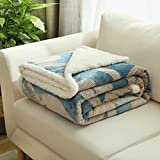 Znzbzt lambs fleece blanket flannel double thick coral fleece blankets twin size bed twin baby infant two winter ,100x120cm 1.2 pounds baby blanket, and style.