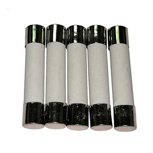 10 Amp Slow Blow Ceramic Fuse