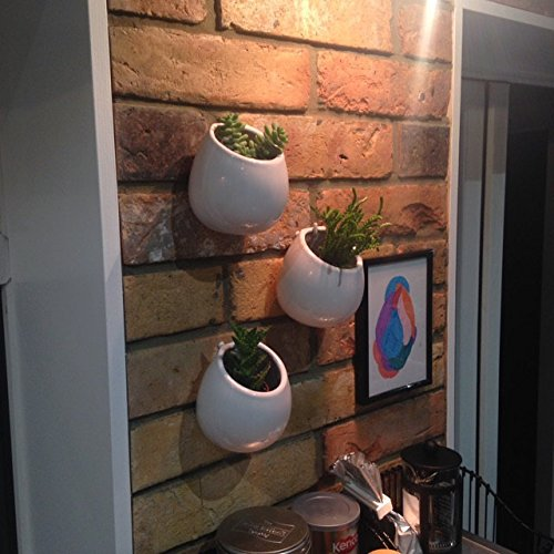 The Sunroom (Pack of 3 Quality White Pots Wall Ceramic Planter for Succulent or Plants Wall Mounted Vase for Dried Flowers Indoor Decoration for Dining Room or Sunroom (3pcs small))