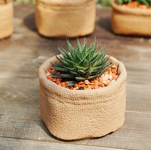 sun-e-succulent-cute-sacks-shape-cement-bonsai-pot-planter-plant-flower-desktop-container-garden-ind
