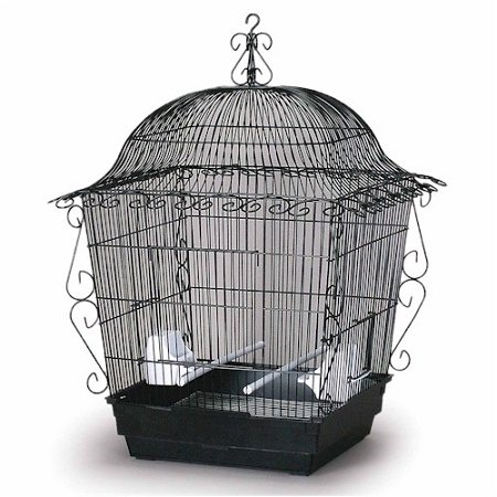 Scrollwork Cage (Domestic Pet Black Elegant Scrollwork Bird Cage Partner)