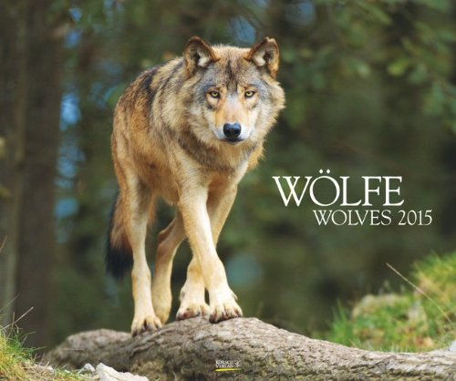 Wölfe 2015: PhotoArt Kalender