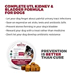 MAX Cranberry for Dogs - Cures & Prevents Painful UTI Urinary Tract Infections. Bladder Support Pills & Kidney Health. No More Antibiotics & Incontinence! D-Mannose & Probiotics Chews, Save on Vet 12