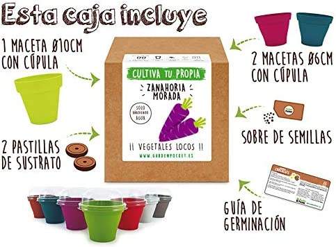 Garden Pocket - Kit Cultivo Zanahoria Morada: Amazon.es: Jardín