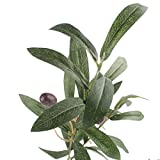 JAROWN Artificial Olive Branch Stems 5pcs 28 Inch