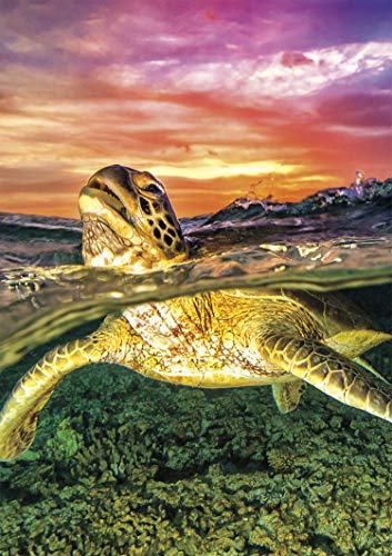 (Buffalo Games - Earthpix Collection - Sea Turtle - 500 Piece Jigsaw Puzzle)