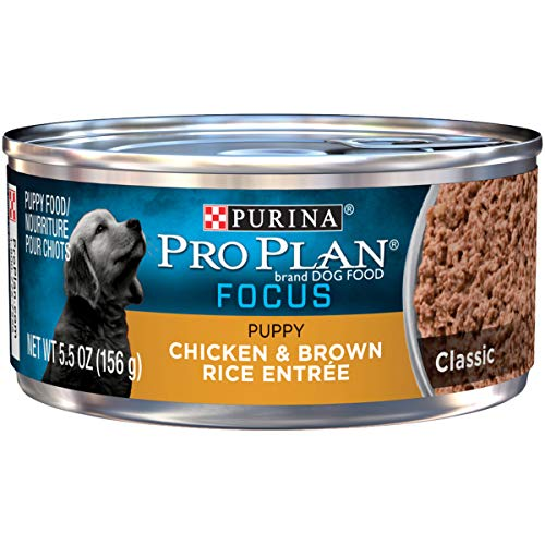 Purina Pro Plan Pate Wet Puppy Food; FOCUS Classic Chicken & Brown Rice Entree - 5.5 oz. Can ()