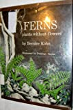 img - for Ferns; plants without flowers book / textbook / text book