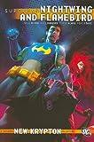 Superman: Nightwing and Flamebird Vol. 1 (Superman, New Krypton)