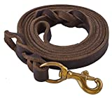 EXPAWLORER Leather Dog Training Leash 6 Foot Heavy Duty Best for Small Medium Large Dogs 1/2 Width Brown