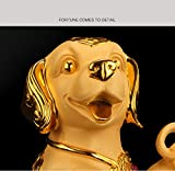 BWinka FengShui 2018 Zodiac Year of Dog With Lucky Coins Feng Shui Decoration for Luck & Wealth
