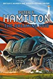 The Dreaming Void (Void Trilogy 1)