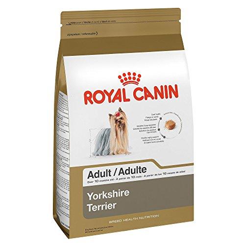 royal canin breed health nutrition yorkshire terrier adult dry dog food. Black Bedroom Furniture Sets. Home Design Ideas