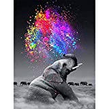 DIY Oil Painting, Paint by Number Kit- Color Elephant,16X20 Inch