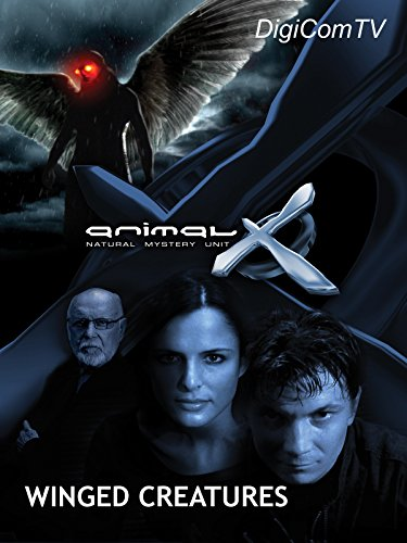 Animal-X - Winged Creatures