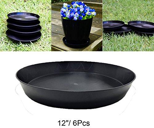 (Hydro Plus Pant Pot Saucer 12