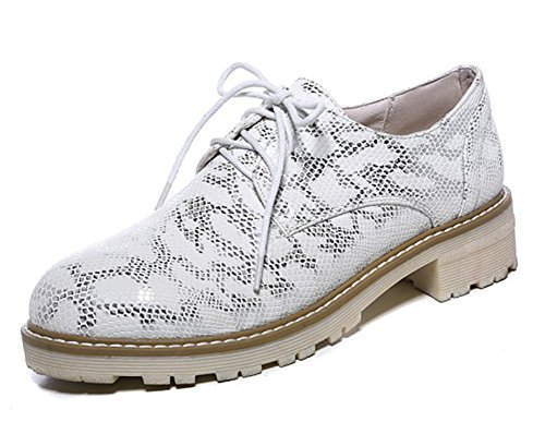Lace Up Shoes SHOWHOW Women's Snakeskin Comfy Oxford White tq7PnOzx1w