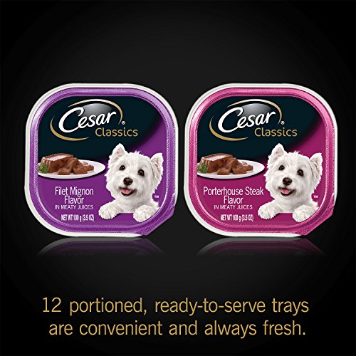 CESAR-Canine-Cuisine-Variety-Pack-Filet-Mignon-Porterhouse-Steak-Dog-Food-Two-12-Count-Cases