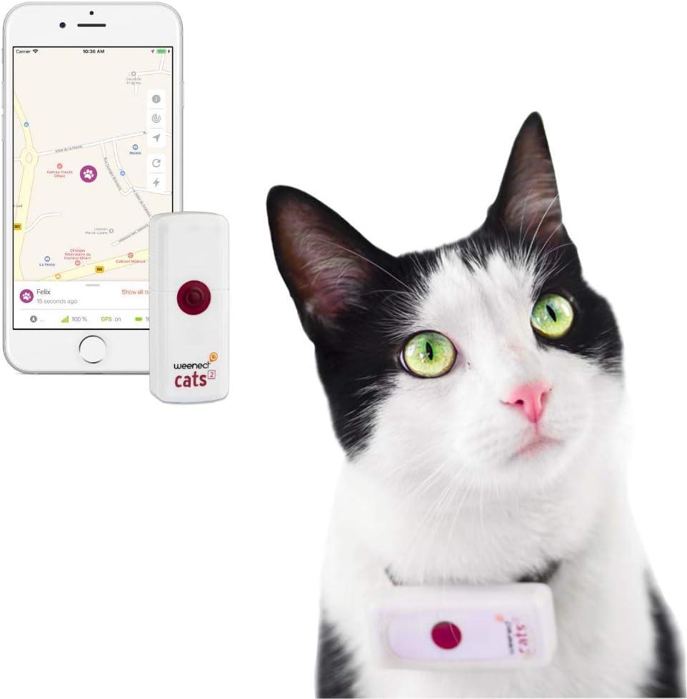 Weenect Cats 2 - Collar GPS para gatos