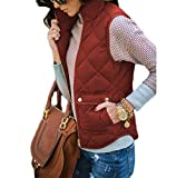 Yi Xian Women's Stand Collar Warm Padded Zip Closure Side Pockets Gilet Quilted Puffer Vest (US 8 (L), Brown)