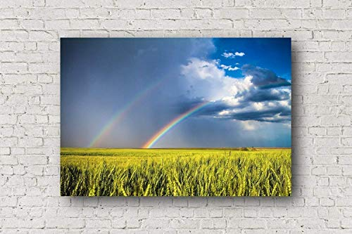 Rainbow Canvas Wall Art - Gallery Wrapped Canvas of Double Rainbow Over Wheat Field in Northern Kansas Landscape Home Decor 8x10 to 30x40