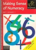 Making Sense of Numeracy: Reception