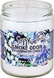 Smoke Odor Exterminator 13 oz Jar Candles Sapphire, Pack of 2