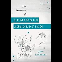 The Experience of Luminous Absorption: The Foundation of Spiritual Life (The Spiritual Teachings of Jeff Carreira Book 2…