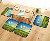 Jiahonghome Fillet Chair Cushion Summer Landscape with Green Grass,Road and Clouds Suitable for The Chair W13.5 x L13.5/4PCS Set