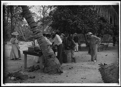 Photo: Tourists buying coconuts,fruit,vendor,Nassau,Bahama Islands,West Indies,1900