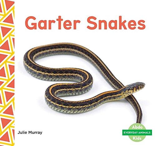 Garter Snakes  Everyday Animals