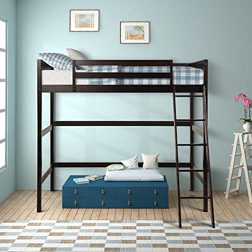 Harper&Bright Designs Panel Style Solid Wood Loft Bed,Side Angled Ladder (Espresso)