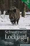 Schwarzwild Lockjagd: Erfahrungen eines Praktikers