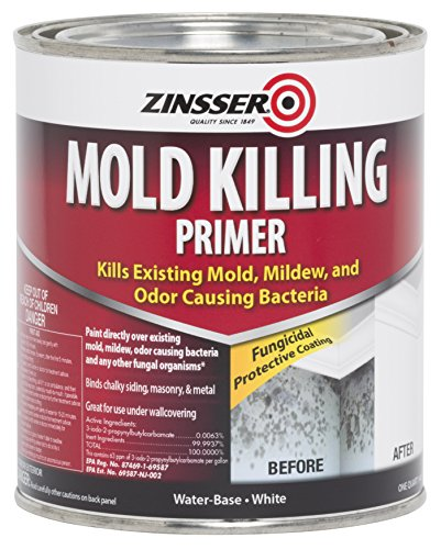 Rust-Oleum 276087 Mold Killing Primer Quart (Best Paint Primer For Interior Walls)